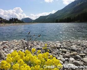Semaine de la biodiversité à Montgenèvre