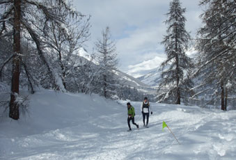 Trail Blanc 2012 à Serre Chevalier